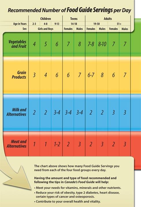 Canada's Food Guide - Wikipedia